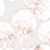 Seamless pattern, background with human skull in rose gold colors. Royalty Free Stock Photos