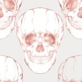 Seamless pattern, background with human skull in rose gold colors. Stock Photos