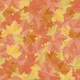 Seamless pattern background maple leafs. Fall wallpaper vector. Fabric ground. Royalty Free Stock Images