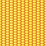 SEAMLESS PATTERN BACKGROUND WITH OVAL MATURE CORN TEXTURE. This realistic pattern of mature corn on the cob can be used both digitally and for printing, i.e. for Royalty Free Stock Photos