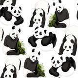 Seamless pattern, background. with pandas and bamboo. Vector illustration without gradients and transparency. Isolated on white background vector illustration