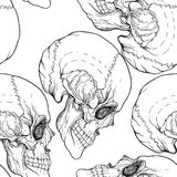Seamless pattern, background with skull . Outline drawing.   Stock Image