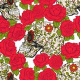 Seamless pattern, background with sugar  skull and red roses. Stock Photos