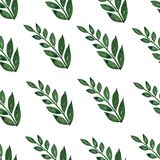 Seamless pattern, background, texture print with light watercolor hand drawn green color dusty leaves, forest herbs, plants. Tender, elegant textile fabric stock illustration