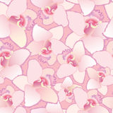 Seamless pattern background with white flowers, or Stock Photo