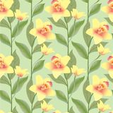 Seamless pattern background with yello flowers, or. Seamless pattern with yellow and red flowers orchids on light green background Stock Photos