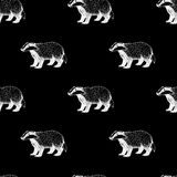 Seamless pattern with badger. Background in vintage style. Royalty Free Stock Photos