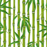 Seamless pattern with bamboo plants and leaves. Background made without clipping mask. Easy to use for backdrop, textile, wrapping paper royalty free illustration