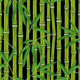 Seamless pattern with bamboo plants and leaves.  Stock Images