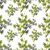 Seamless pattern Bamboo tree tropical china japan. Vector illust Royalty Free Stock Image