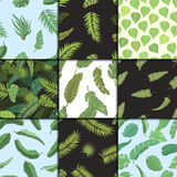 Seamless pattern with banana leaves vector illustration. Royalty Free Stock Image