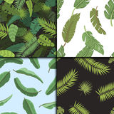 Seamless pattern with banana leaves vector illustration. Stock Images