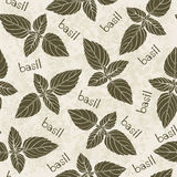 Seamless pattern with basil. Hand-drawn floral background. Mono Stock Image