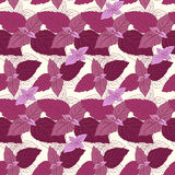 Seamless pattern with basil Royalty Free Stock Images