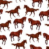 Seamless pattern with bay horses running horses and riders. vector illustration
