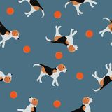Seamless pattern Beagle dogs, balls on blue, vector eps 10. Seamless animals pattern Beagle dogs play with orange balls on blue background. Pet drawn simple vector illustration