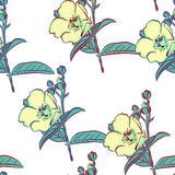 Seamless pattern with beautiful blue flowers. Vector illustration.  Royalty Free Stock Photos