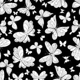 Seamless pattern of beautiful butterflies Stock Photos