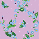 Seamless pattern with beautiful flowers - forget m Stock Images