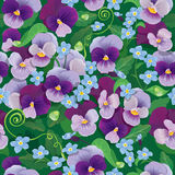 Seamless pattern with beautiful flowers - pansy an Stock Photos