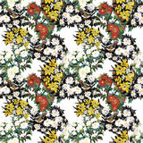 Seamless pattern with Beautiful flowers, Watercolor painting Royalty Free Stock Image