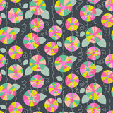 Seamless pattern with beautiful gentle bindweeds.   Royalty Free Stock Images
