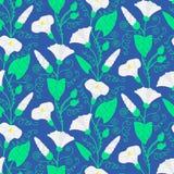 Seamless pattern with beautiful gentle bindweeds  Stock Photo