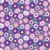 Seamless pattern with beautiful gentle bindweeds.  Stock Photography