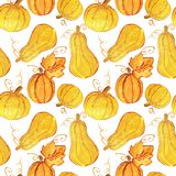Seamless pattern with beautiful golden pumpkins on white background. Watercolor painting. Autumn concept Stock Image