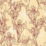 Seamless pattern with beautiful irises flowers,art deco style Royalty Free Stock Image