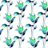 Seamless pattern with Beautiful Lily flowers Royalty Free Stock Photos