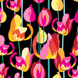 Seamless pattern with beautiful multi-colored tulips Royalty Free Stock Images