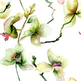 Seamless pattern with Beautiful orchid Royalty Free Stock Photo