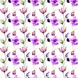 Seamless pattern with Beautiful Poppies and Tulips flowers. Watercolor painting Royalty Free Stock Photography