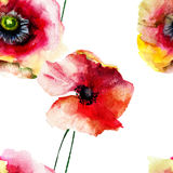 Seamless pattern with Beautiful Poppy flowers Royalty Free Stock Photography