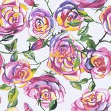 Seamless pattern with beautiful roses Royalty Free Stock Photography