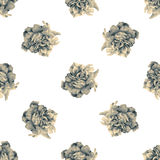 Seamless pattern with beautiful roses Royalty Free Stock Photo
