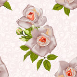 Seamless pattern with beautiful roses on pastel colors Royalty Free Stock Photo