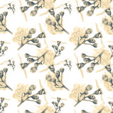 Seamless pattern with beautiful spring flowers and plants Royalty Free Stock Photo