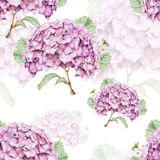 Seamless pattern with beautiful spring flowers and plants Royalty Free Stock Images