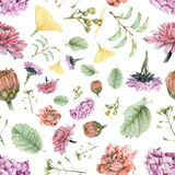 Seamless pattern with beautiful spring flowers and plants Stock Photography
