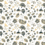 Seamless pattern with beautiful spring flowers and plants Royalty Free Stock Photography