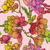 Seamless pattern with Beautiful of spring freesias Stock Images