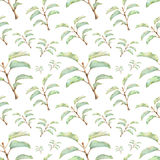 Seamless pattern with beautiful spring plants Royalty Free Stock Photo