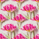 Seamless pattern with beautiful tulip flowers. Floral seamless background Stock Photography