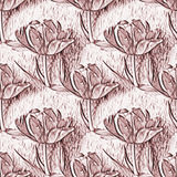 Seamless pattern with beautiful tulip flowers. Floral seamless background Royalty Free Stock Images