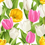 Seamless pattern of beautiful tulips Stock Images