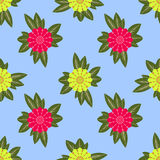 Seamless pattern, beautiful unusual flowers on a light blue background Royalty Free Stock Image