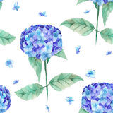 A seamless pattern of the beautiful watercolor blue Hydrangea flowers Royalty Free Stock Image