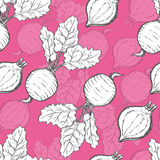 Seamless pattern with beet. Vector illustration for your design Royalty Free Stock Photo